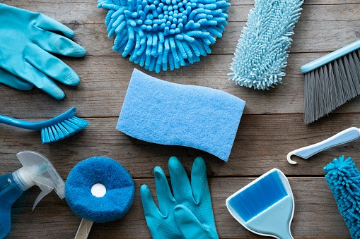 Cleaning and Sanitization Services